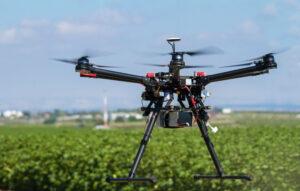 Drone above Grass